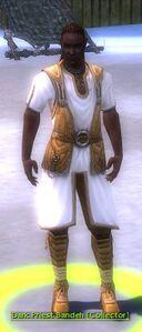 Dark Priest Bandeh.jpg