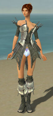 Elementalist Primeval Armor F gray chest feet front.jpg