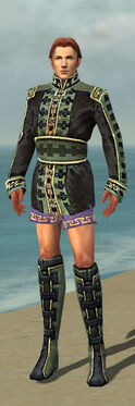 Mesmer Canthan Armor M gray chest feet front.jpg