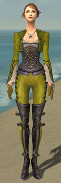 Mesmer Rogue Armor F dyed front.jpg