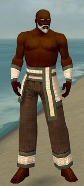 Monk Elite Woven Armor M gray arms legs front.jpg