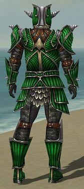 Warrior Wyvern Armor M dyed back.jpg