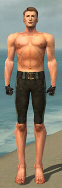 Mesmer Performer Armor M gray arms legs front.jpg