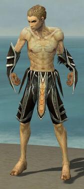Necromancer Elite Sunspear Armor M gray arms legs front.jpg