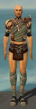 Ritualist Imperial Armor M gray chest feet front.jpg