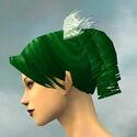 Formal Attire F dyed head side.jpg