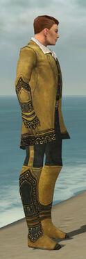 Mesmer Krytan Armor M dyed side.jpg
