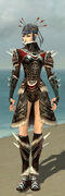 Necromancer Norn Armor F gray front.jpg