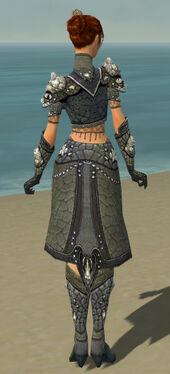 Elementalist Elite Stoneforged Armor F gray back.jpg