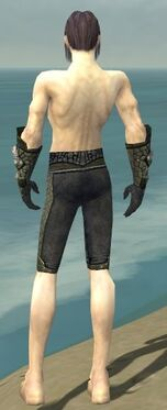 Elementalist Elite Stoneforged Armor M gray arms legs back.jpg