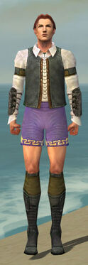 Mesmer Ascalon Armor M gray chest feet front.jpg