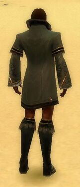 Mesmer Norn Armor M gray chest feet back.jpg