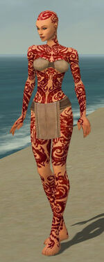 Monk Dragon Armor F dyed front.jpg