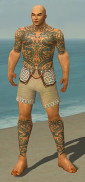 Monk Dragon Armor M gray chest feet front.jpg