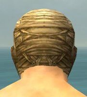 Mummy Mask gray back.jpg