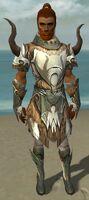 Paragon Norn Armor M gray front.jpg