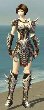 Warrior Norn Armor F nohelmet.jpg