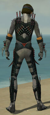 Assassin Elite Canthan Armor M gray back.jpg