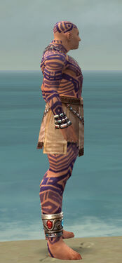 Monk Labyrinthine Armor M dyed side.jpg