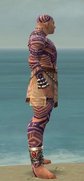 Monk Labyrinthine Armor M dyed side.jpg