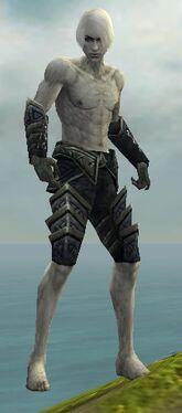 Necromancer Elite Cultist Armor M gray arms legs front.jpg