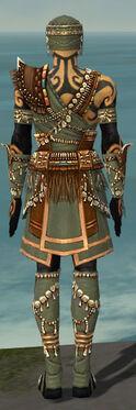 Ritualist Imperial Armor M gray back.jpg