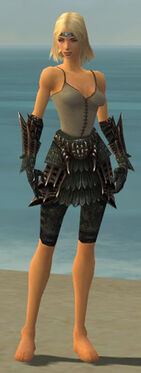 Warrior Elite Dragon Armor F gray arms legs front.jpg