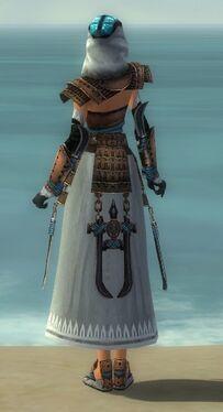 Dervish Monument Armor F dyed back.jpg