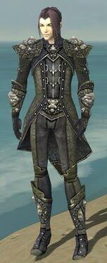 Elementalist Elite Stoneforged Armor M gray front.jpg