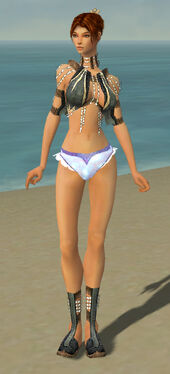 Elementalist Sunspear Armor F gray chest feet front.jpg