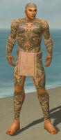 Monk Dragon Armor M gray front.jpg