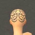 Monk Elite Canthan Armor F gray head back.jpg