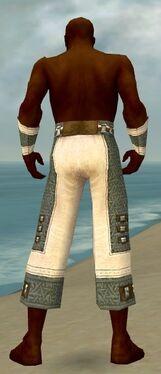 Monk Elite Saintly Armor M gray arms legs back.jpg