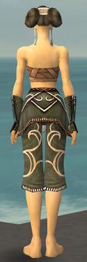 Monk Shing Jea Armor F gray arms legs back.jpg
