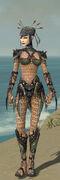 Necromancer Elite Cabal Armor F gray front.jpg