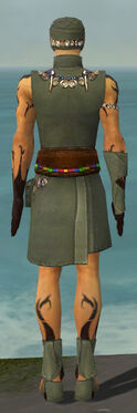 Ritualist Shing Jea Armor M gray back.jpg