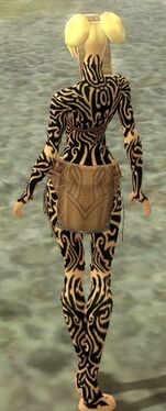Monk Flowing Armor F dyed back.jpg