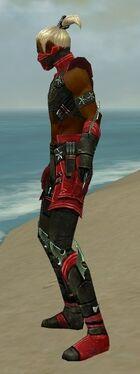 Assassin Luxon Armor M dyed side.jpg