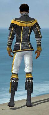 Elementalist Luxon Armor M dyed back.jpg