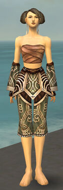 Monk Canthan Armor F gray arms legs front.jpg