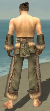 Monk Norn Armor M gray arms legs back.jpg