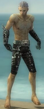 Necromancer Canthan Armor M gray arms legs front.jpg