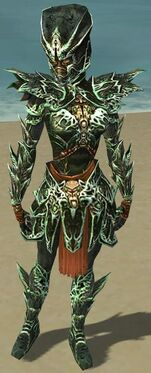 Warrior Elite Luxon Armor F dyed front.jpg