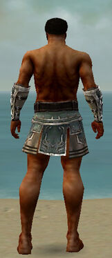 Warrior Istani Armor M gray arms legs back.jpg