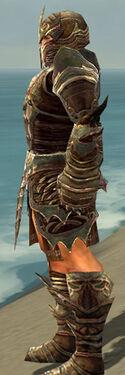 Warrior Monument Armor M gray side.jpg