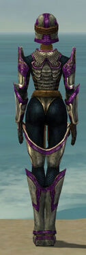 Warrior Sunspear Armor F dyed back.jpg