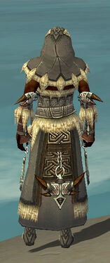 Dervish Norn Armor M gray back.jpg