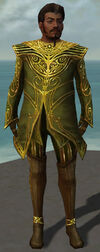 Norgu Mysterious Armor Front.jpg