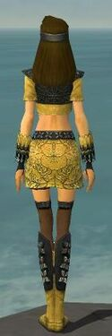 Assassin Canthan Armor F dyed back.jpg