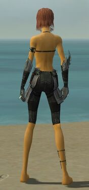 Assassin Luxon Armor F gray arms legs back.jpg